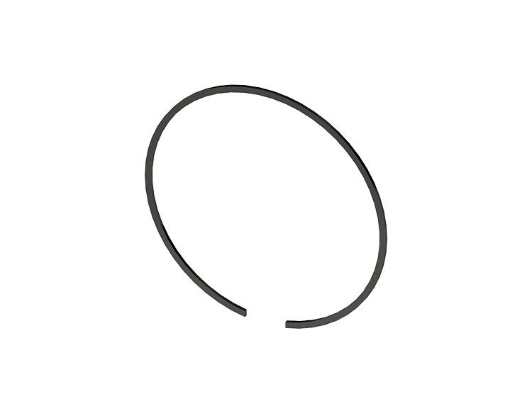 Snap Ring