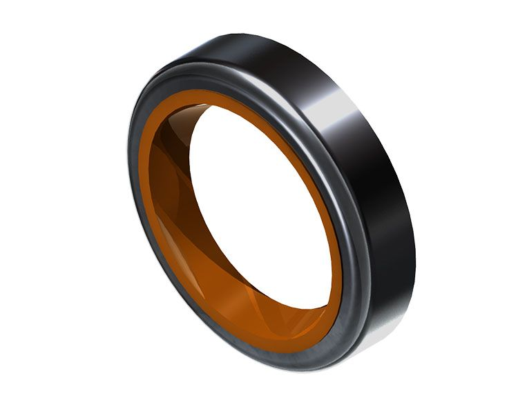 Radial Lip Seal